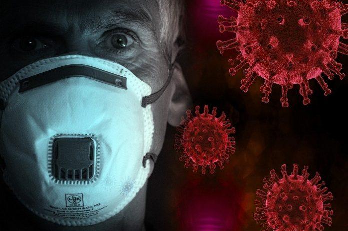 Cádiz registra 67 nuevos casos de coronavirus en un día