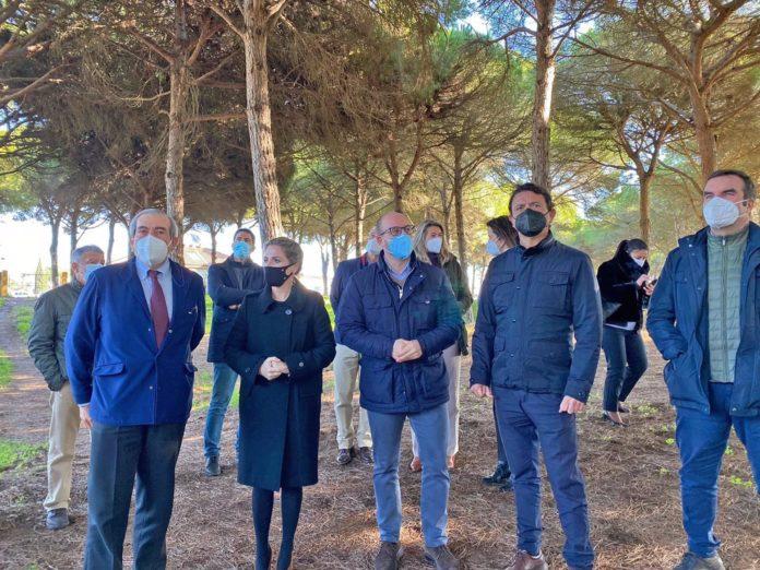Invierten 150.000 euros en la mejora del monte Dunas de San Antón en El Puerto