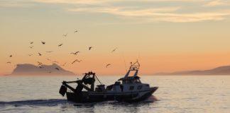 Barbate cuenta con nuevas Organizaciones de Productores Pesqueros