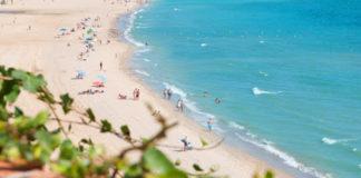 Retiran más de 20 toneladas de algas en la playa de Getares